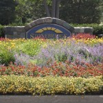 Flower bed at entranceway