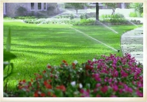 Irrigation Systems | Ann Arbor MI