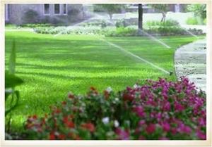 Irrigation1_large