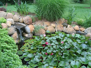 What size pump do you need for your pond for Garden pond do you need a pump