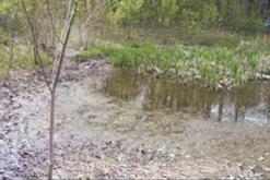 Retention / Detention pond - Before