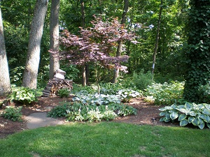 Shade Garden of Hostas