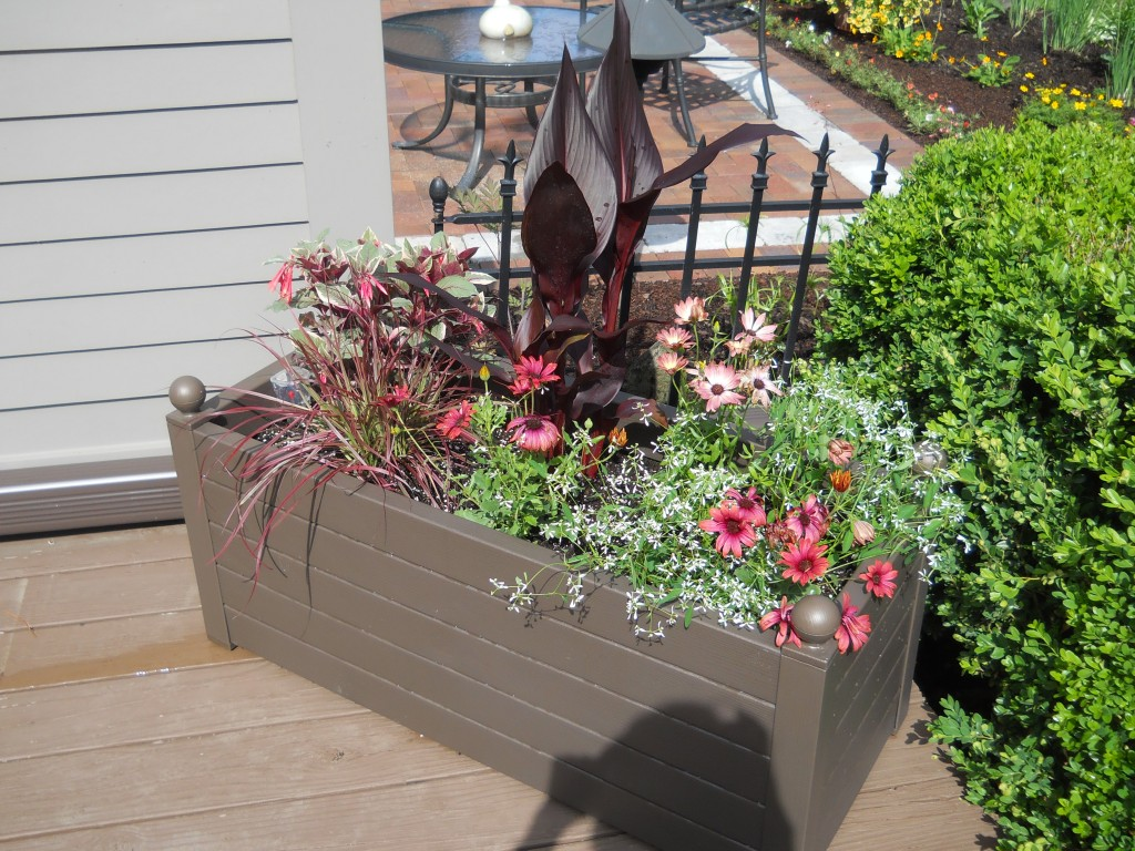 Planting Box - After