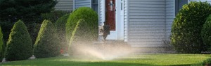 lawn irrigation installation in Ann Arbor MI