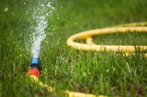 Yard irrigation