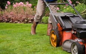 bigstock-Gardener-mowing-the-lawn--18929231