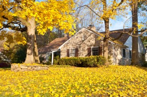 bigstock-House-Philadelphia-Yellow-Fall-23769386