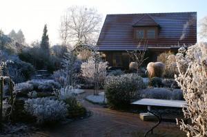 bigstock-winter-in-a-natural-garden-9769973