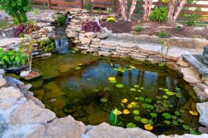 Decorative koi pond in a garden