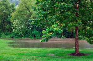 After The Heavy Rain