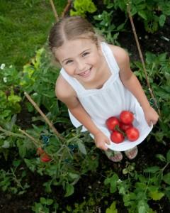 girl collecting tomatoes in her dress