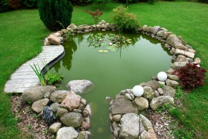 Beautiful Classical Design Garden Fish Pond Gardening Background