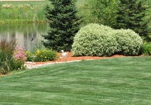 bigstock-Backyard-Landscaping-9601373