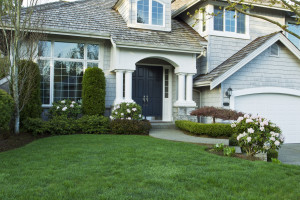 The Benefits of Hydroseeding for Your Lawn Ann Arbor