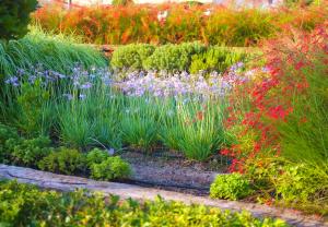 Landscaping in the garden