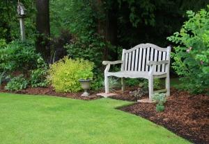 Wooden bench in a beautiful park garden.