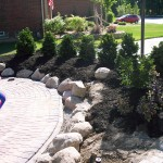 Install boulders & plants