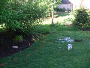 drainage - does your yard look like this