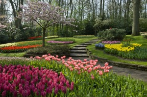 stone walkways bordered by colorful flowers.