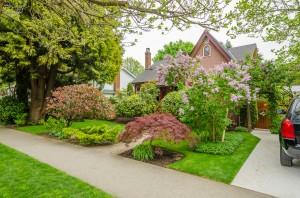 Landscape Contractors Ann Arbor MI