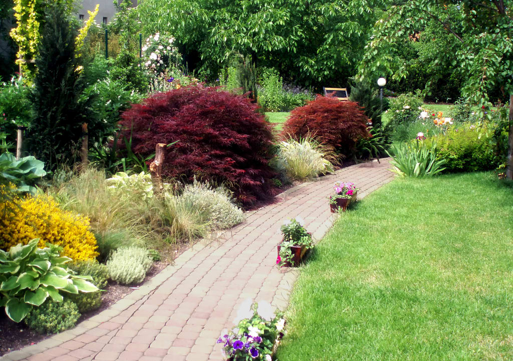 garden big and beautiful singles Let these outdoor design ideas for shrubbery, walkways, and more inspire you to create your own beautiful backyard garden or front lawn oasis view gallery 53 photos.