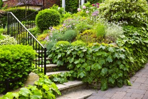 Landscaped garden path with natural stone steps and metal railin