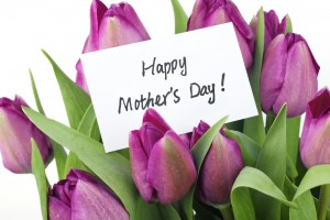 Mother's Day Concept-- Purple tulips with card on white backgrou