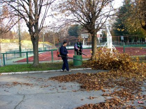 Professional landscape services cleaning up leaves in Autumn.