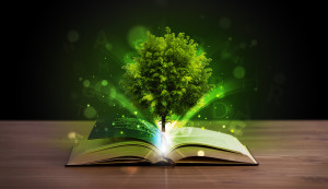 Open book with magical green tree and rays of light on wooden de