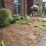 After - Landscape Bed