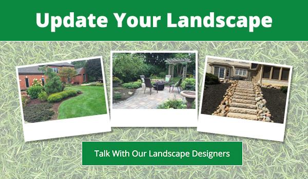 Landscape Designer Ann Arbor