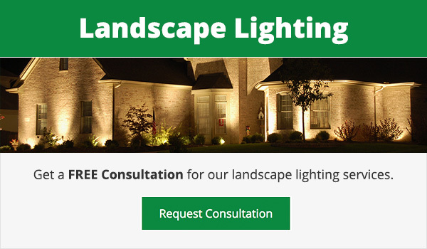 Landscape Lighting Ann Arbor