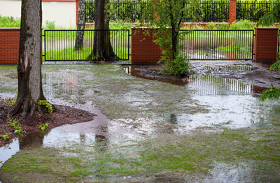Twin Oaks Landscape is a professional drainage contractor in Ann Arbor that can fix the standing water in your yard.