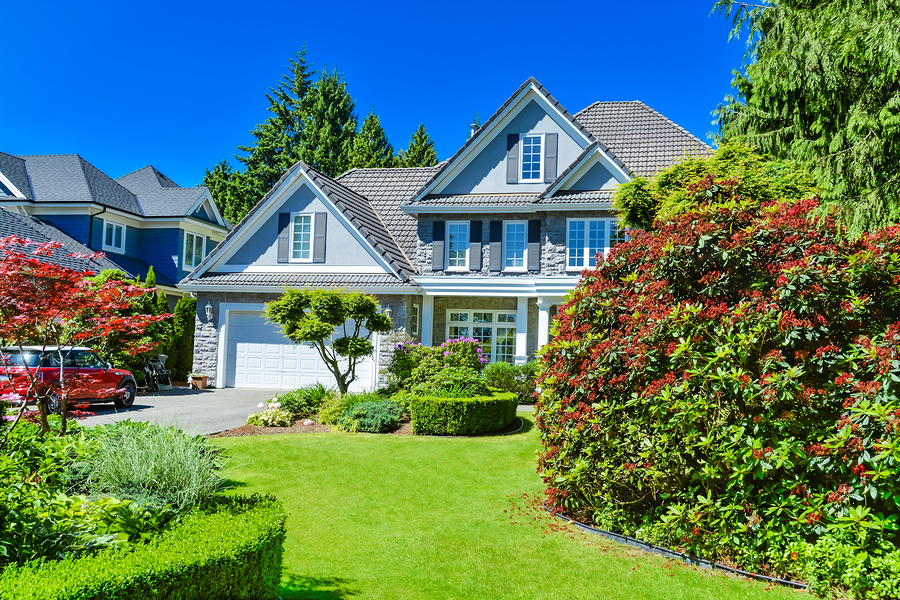 Luxury residential house with green hedge and landscaping in front. Family house surrounded by trees with blue sky background. Suburban house with double garage and car parked on concrete driveway