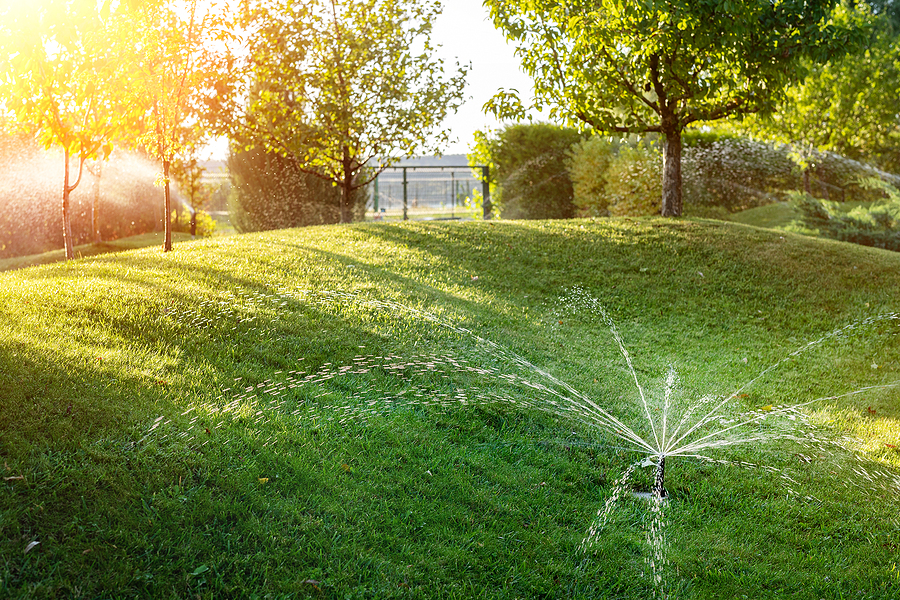 Landscape automatic garden watering system with different sprinklers installed under turf. Landscape design with lawn hills and fruit garden irrigated with smart autonomous sprayers at sunset.