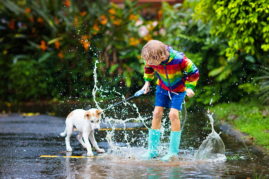 Kid and dog playing in a large puddle after a good rain.